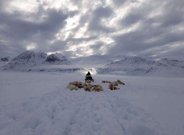 Cazador inuit en la banquisa groenlandesa