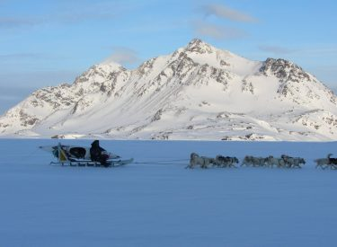 Cazador inuit con el trineo de perros