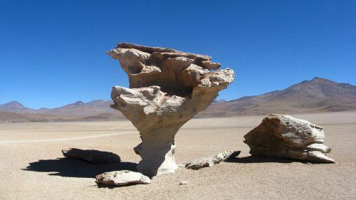 Árbol de Piedra, Siloli