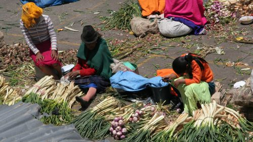 Mercado indigena - Salasacas