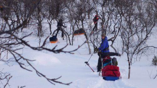 Atravesando el bosque con las pulkas