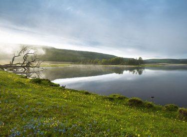 Lago Khövsgöl nuur