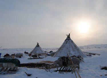 Trineo y campamento nenet