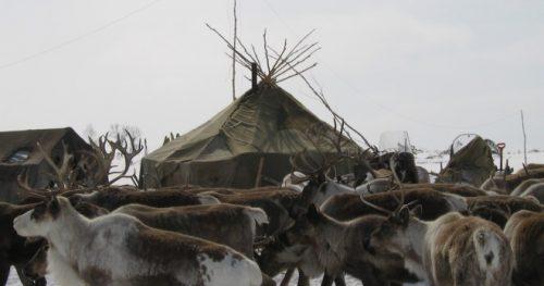Campamento even