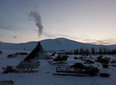Campamento nenet en las Montañas Urales Polares
