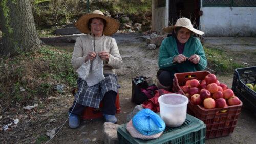 Puestos callejeros de frutas en Pogradec junto al lago Ohrid